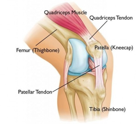 A Knee Pain 2